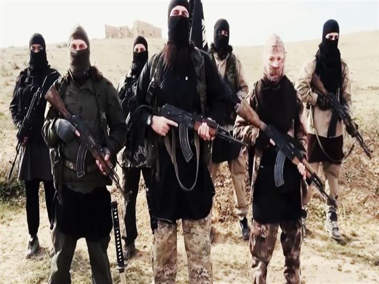 برلين: عدد مقاتلي داعش الألمان المأسورين بسوريا يتجاوز 40 مقاتلا
