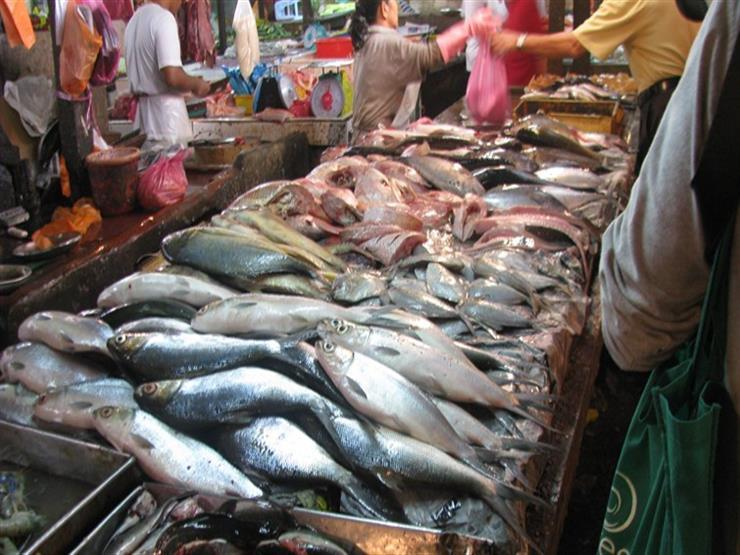 البوري يتراجع 4 جنيهات.. أسعار السمك في سوق العبور خلال أسبوع