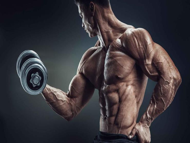 للرياضيين.. 10 عناصر غذائية لبناء وتشكيل العضلات