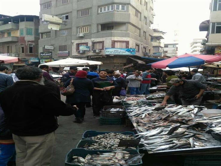"""أسعار السمك في دمياط.. """"البلطي"""" يقفز إلى 60 جنيهًا و""""كافيار الغلابة"""" بـ 80"""
