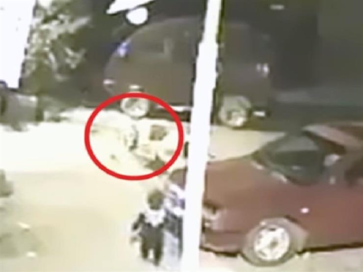 شاهد.. كلباً شارداً يهاجم طفلا بمحافظة القليوبية