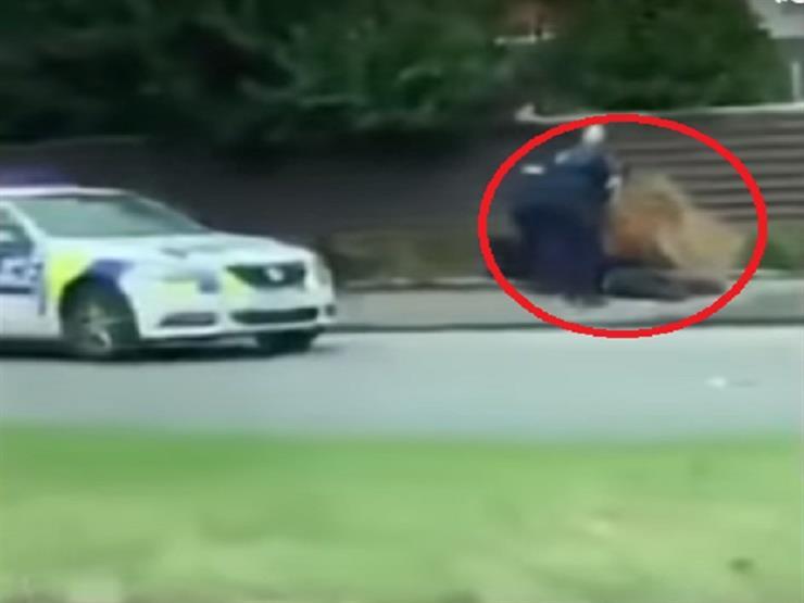 بالفيديو ..لحظة القبض علي أحد منفذي الهجومين بنيوزيلندا