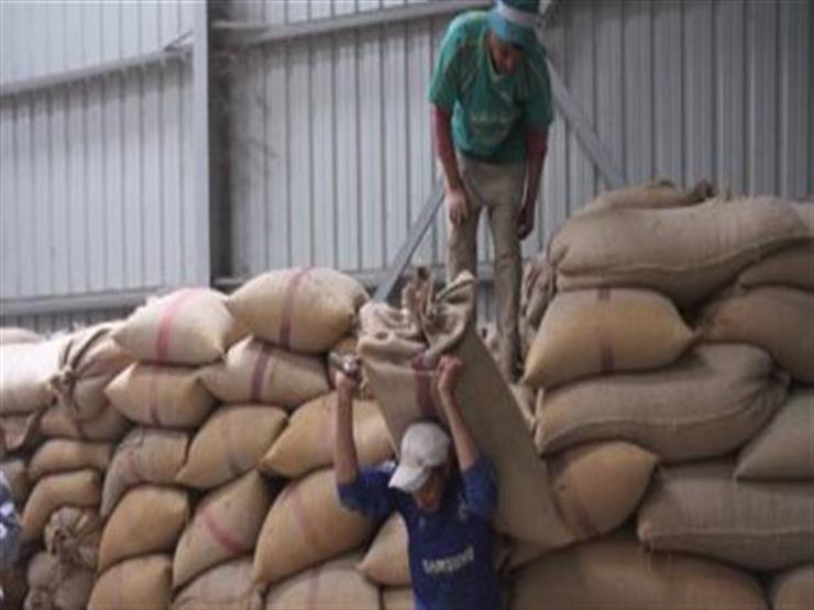 المؤسسة الإسلامية لتمويل التجارة توفر 1.2 مليون طن قمح لمصر في فبراير