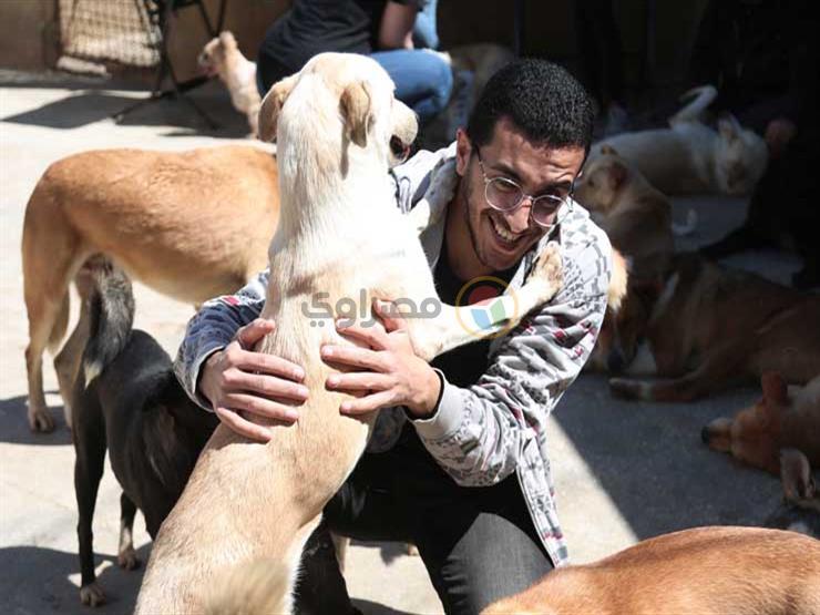 """بالصور- رحلة كل جمعة.. زيارة لملجأ الكلاب والقطط """"عشان الحيوانات تتبسط"""""""