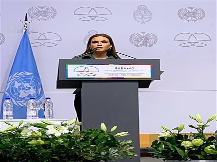 مصر تطالب المؤسسات الدولية بوضع الدول النامية على رأس أجندتها التنموية
