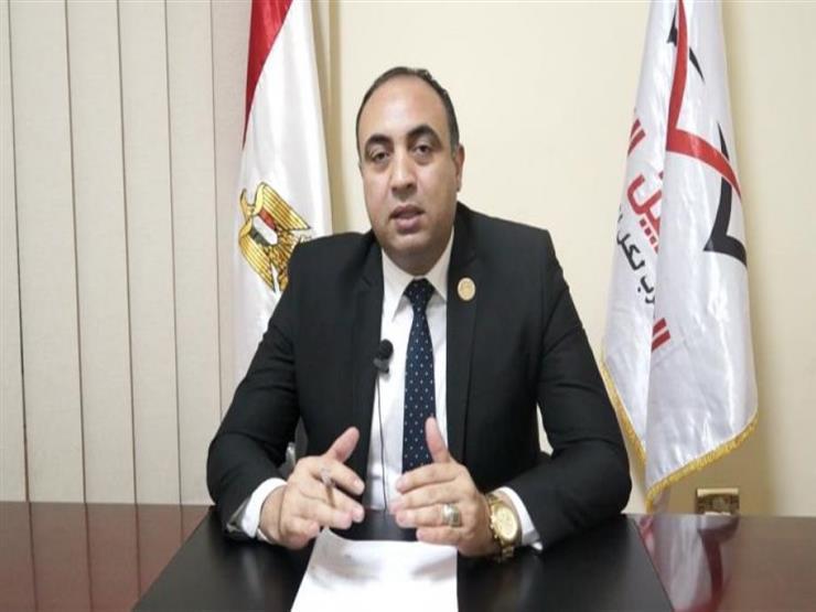 برلماني: مصر ستشارك بقوة في إعمار العراق