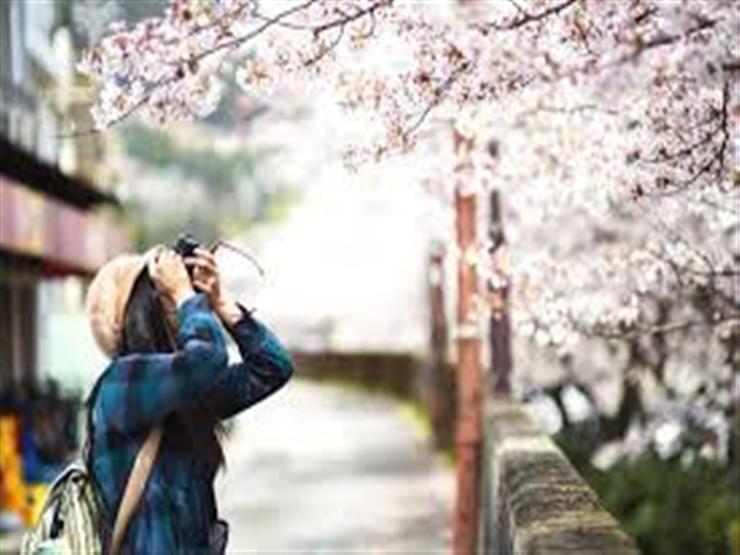 8 نصائح لرحلة سفر مميزة هذا الربيع