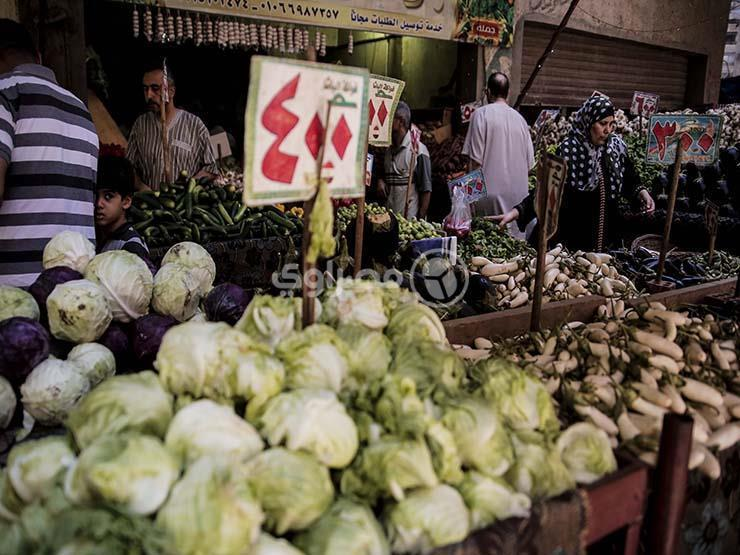 تراجع الفاصوليا والباذنجان.. أسعار الخضر والفاكهة في سوق العبور اليوم