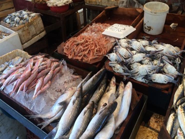 أسعار السمك في سوق العبور خلال أسبوع