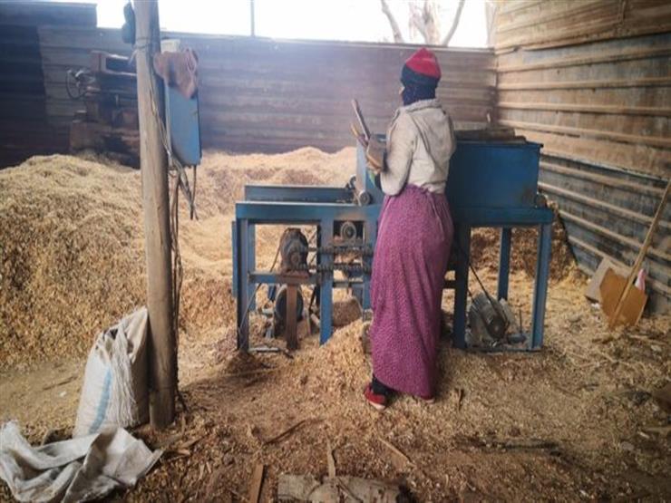 اليوم العالمي للمرأة: سوريات يكافحن لتأمين الدفء لمنازلهن