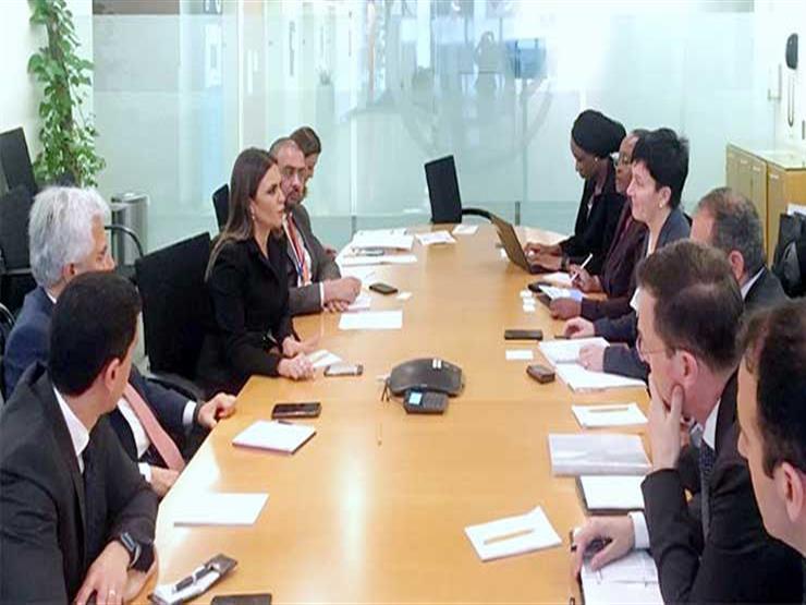 الاستثمار: مؤسسة التمويل الدولية توسع نشاطها بمصر الفترة المقبلة
