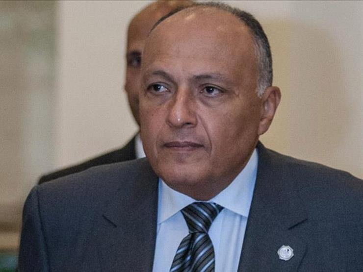 Shukri affirms Egypt's continued assist for the legit rights of the Palestinian people