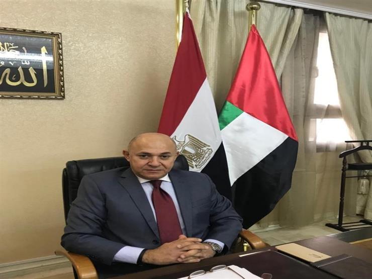 سفير مصر في أبو ظبي: نسقنا مع شرطة الإمارات لتأمين عملية الاستفتاء
