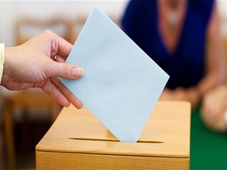 """""""الهجرة"""": إقبال على التصويت بالاستفتاء في 4 دول أفريقية"""