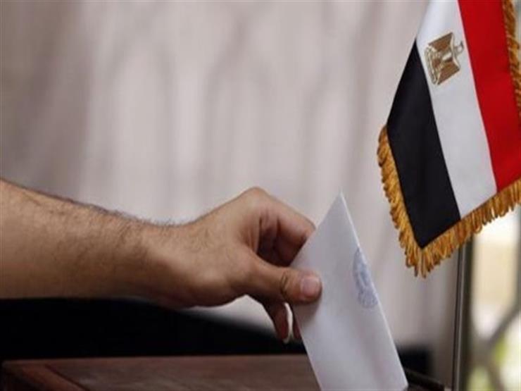 المصريون بالإمارات والعراق والبحرين يدلون بأصواتهم في الاستفتاء على التعديلات الدستورية