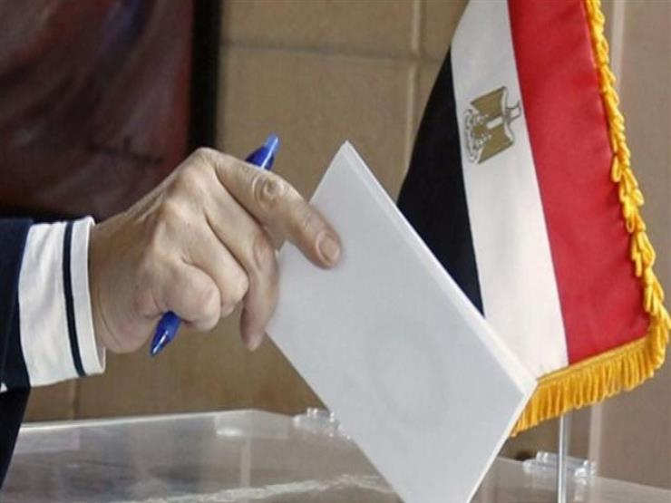 Egyptian Ambassador to Mauritania: efficient participation of members of the neighborhood in voting on constitutional amendments