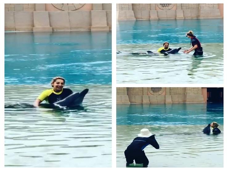 فيديو  مي حلمي تقضي شهر العسل مع الدلافين