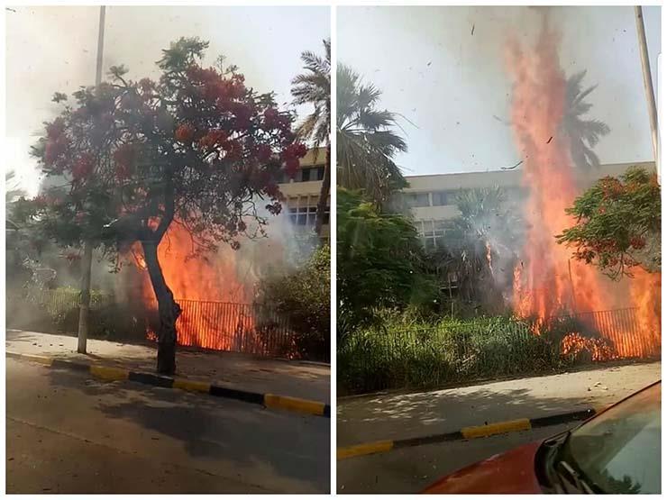 """""""النار وصلت للسماء"""".. كواليس حريق أثار الذعر في الطالبية (فيديو وصور)"""
