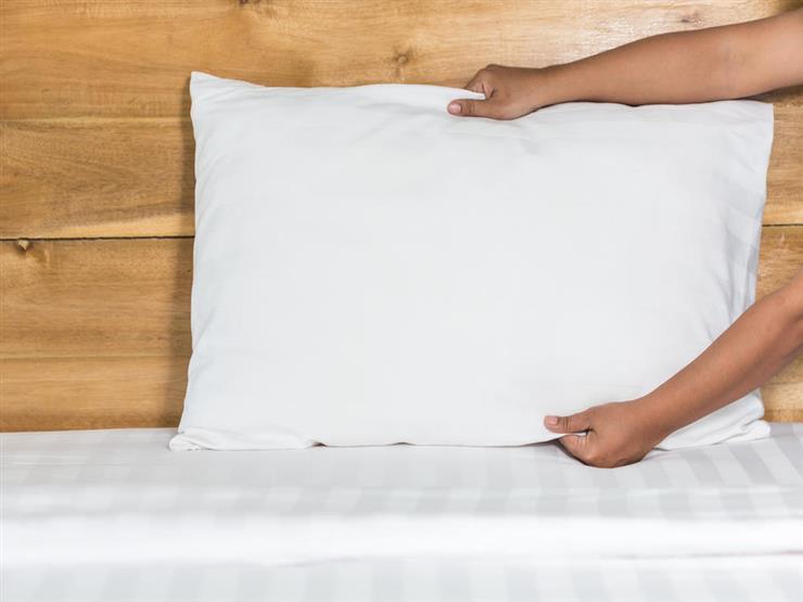 6 وصفات سحرية للتخلص من حشرات السرير في الصيف