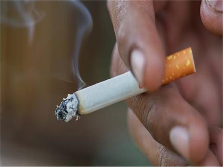 """""""اجتاحت المجتمع"""".. مقترح برلماني بتدريس خطورة التدخين في المدارس"""
