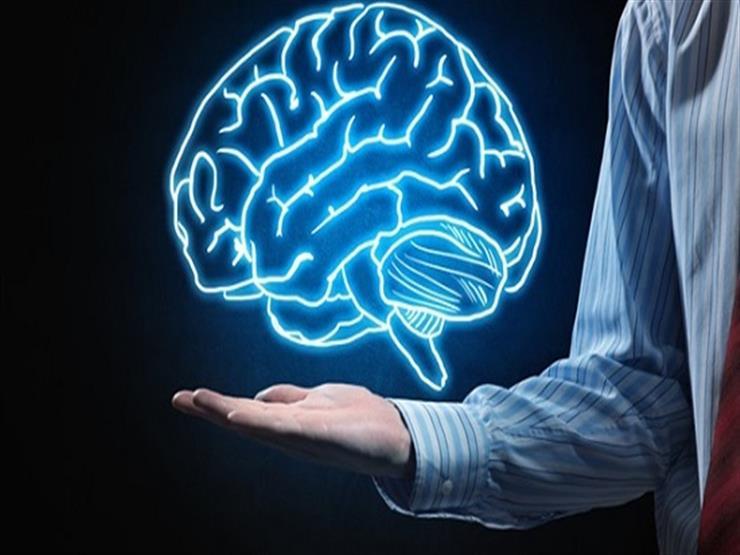 بعد تبرعها بجزء منه.. أمريكية تمنح العلماء فرصة لدراسة خلايا المخ