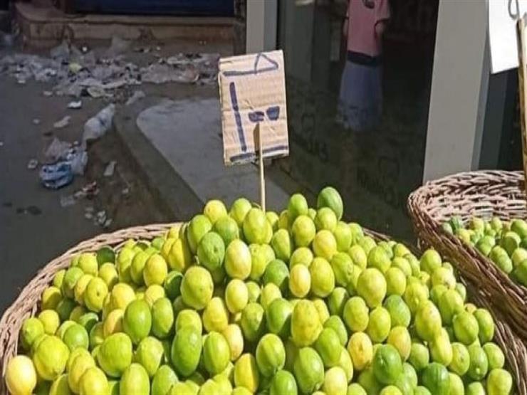 أطراف الأزمة يتحدثون.. لماذا وصل سعر كيلو الليمون إلى 100 جن   مصراوى