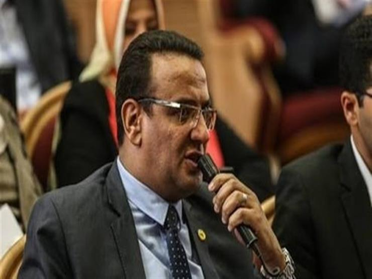 """متحدث البرلمان: قمة السيسي و""""الأحمد"""" أكدت موقف مصر الحاسم تجاه أمن الخليج"""
