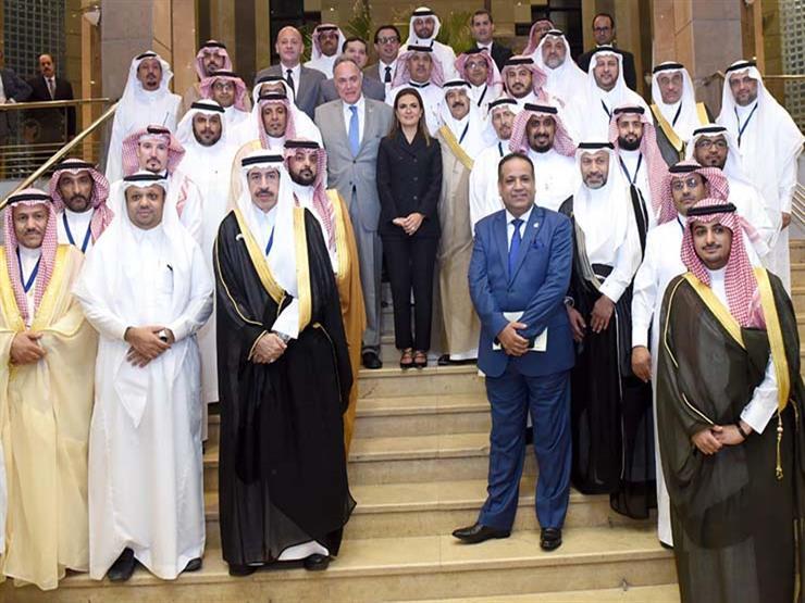 الحكومة تعرض فرص الاستثمار في مصر على وفد سعودي