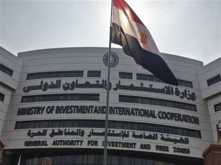 الاستثمار: مصر ملتزمة بدورها الريادي في دعم دول أفريقيا لتحقيق التنمية
