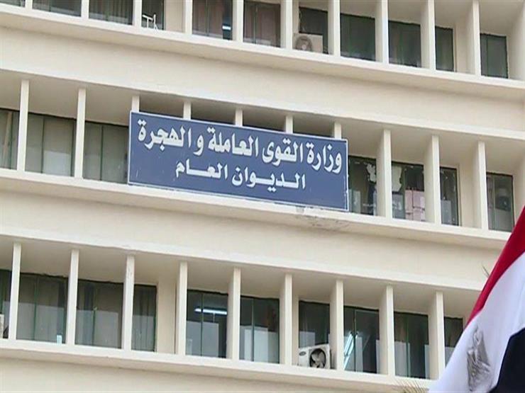 القوي العاملة: صرف 45 ألف جنيه مستحقات 3 عمال بالأردن