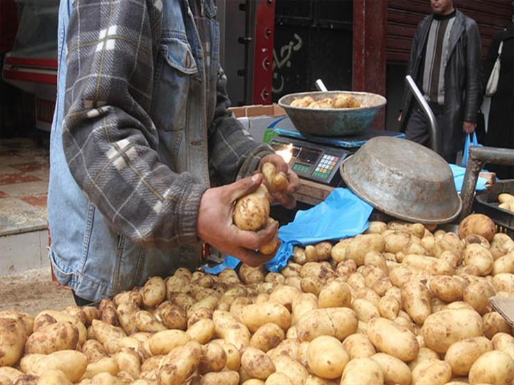 5 جنيهات لكيلو البطاطس.. أسعار الخضروات والفاكهة في سوق العبور اليوم
