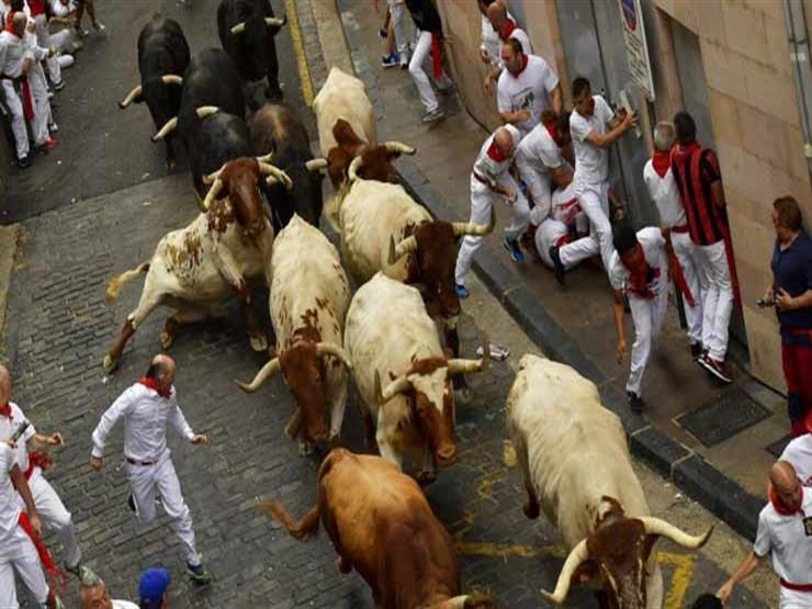 إصابة 5 أشخاص في أحدث مهرجانات ركض الثيران في اسبانيا