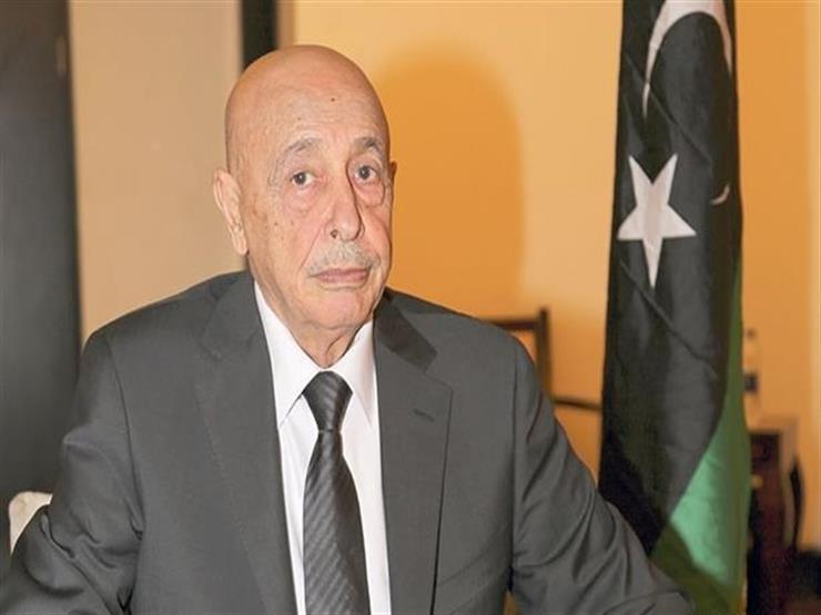 وصول وفد من مجلس النواب الليبي إلى القاهرة لبحث حل الأزمة الليبية