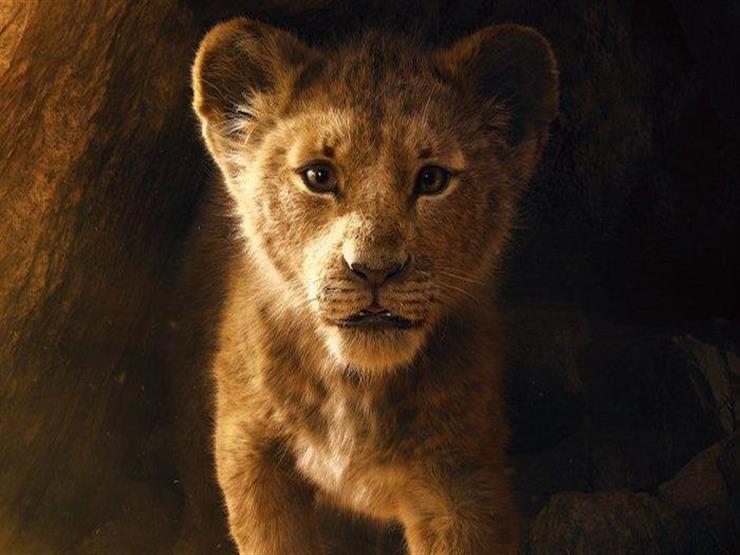 """إيرادات الخميس.. """"Angel has fallen"""" الثاني و""""The Lion King"""" بالمركز الرابع"""