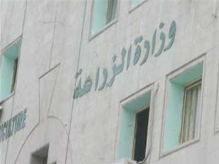 أنور عيسى مديرًا لمديرية الزراعة بمحافظة الجيزة