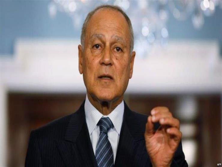 أبو الغيط: التدخلات التركية في الشأن الليبي واضحة وتناقض المصالح العربية