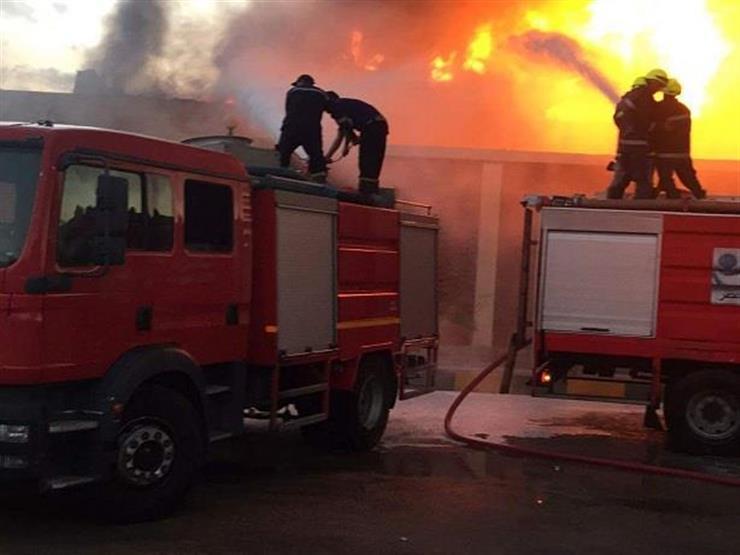 لغز اشتعال النيران وذبح 11 رأس ماشية بمزرعة خيول بالغردقة