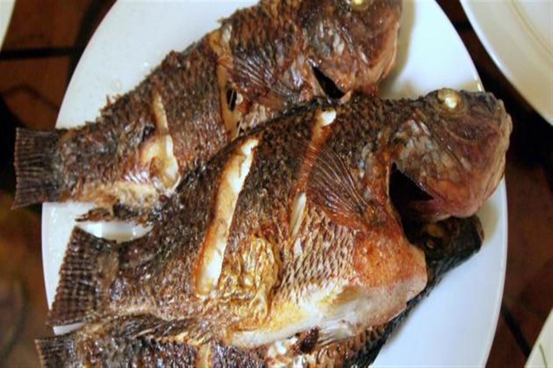 لتجنب سرطان الأمعاء.. تناول 3 وجبات من السمك أسبوعيا