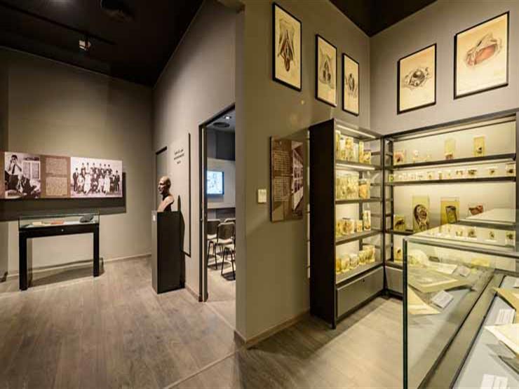 الحكومة توضح حقيقة سرقة مقتنيات متحف نجيب محفوظ عقب افتتاحه