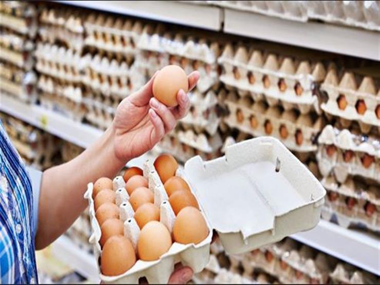 10 طرق مهمة لكشف البيض الفاسد.. واحذر وضعه في باب الثلاجة