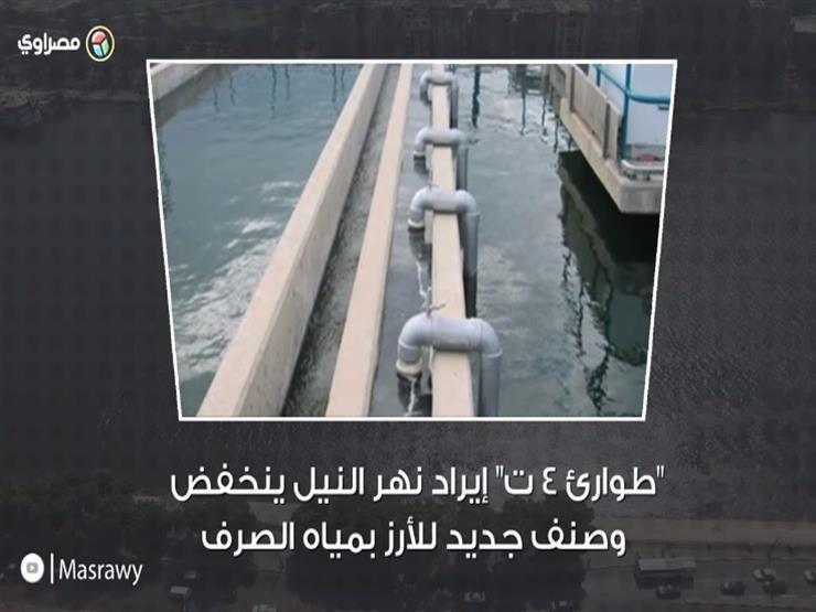 """""""طوارئ 4 ت"""".. إيراد نهر النيل ينخفض وصنف جديد للأرز بمياه الصرف"""