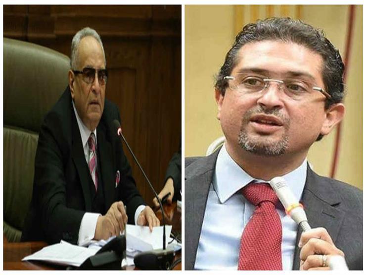 """تفاصيل أزمة """"الوفد"""" مع النائب كريم سالم.. وهذا رد الحزب"""