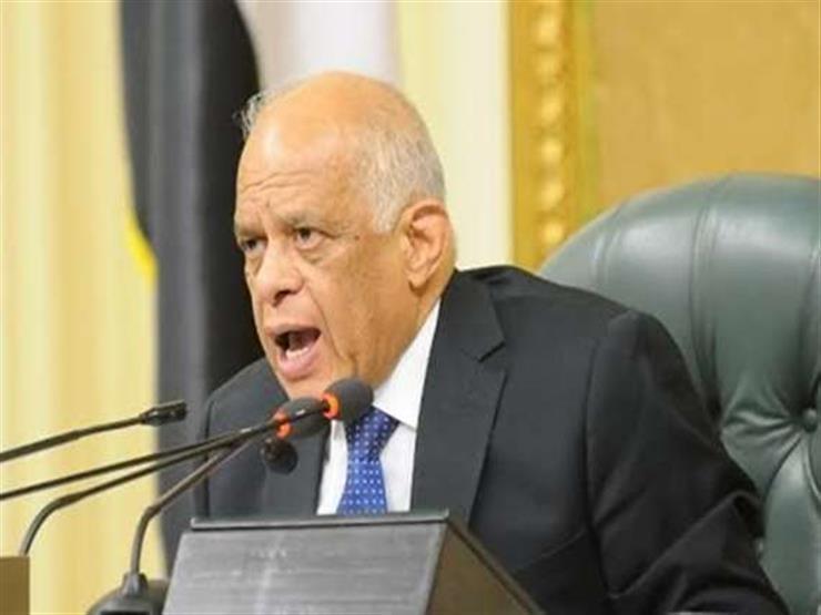 عبدالعال يطالب مرتضى منصور بالالتزام داخل قاعة البرلمان:  حر   مصراوى