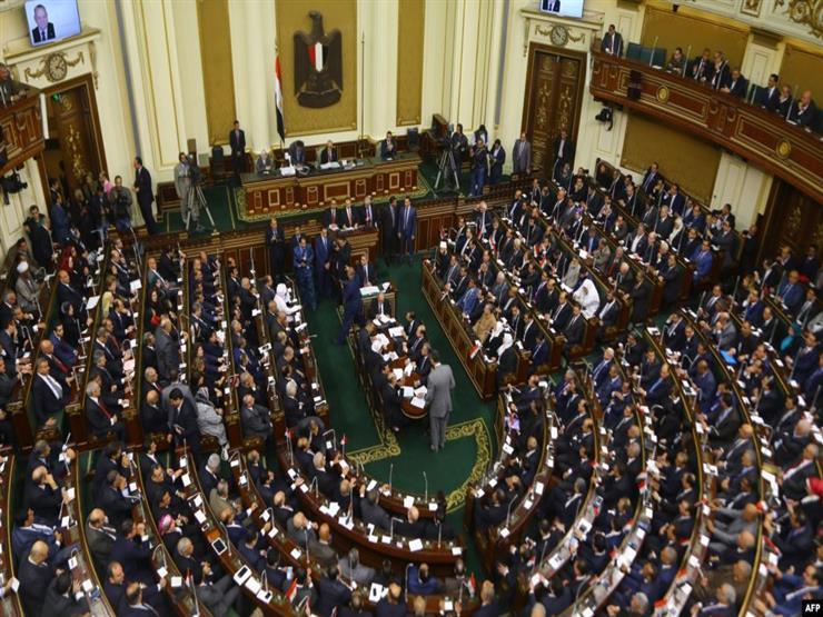 برلماني: المشروعات الصغيرة تمنع المخاطرة بمستقبل الشباب