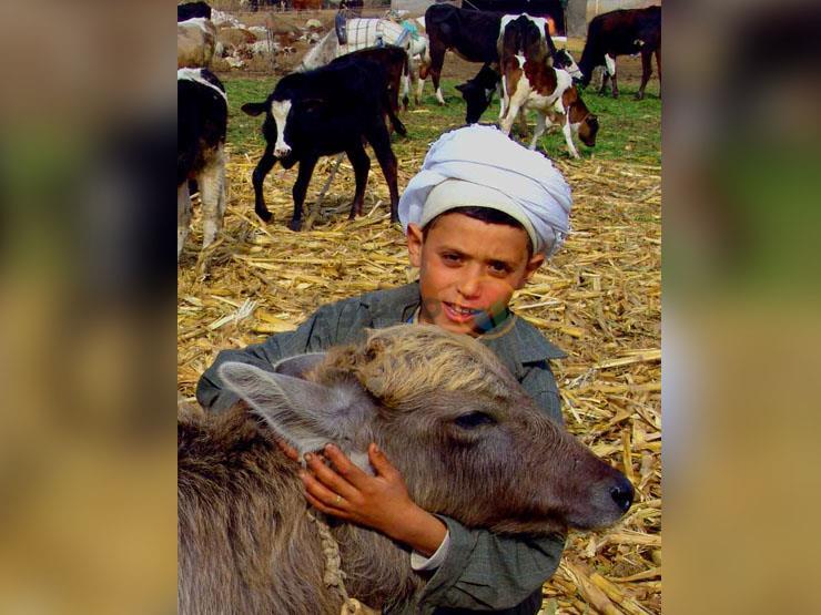 جانا العيد (صورة)