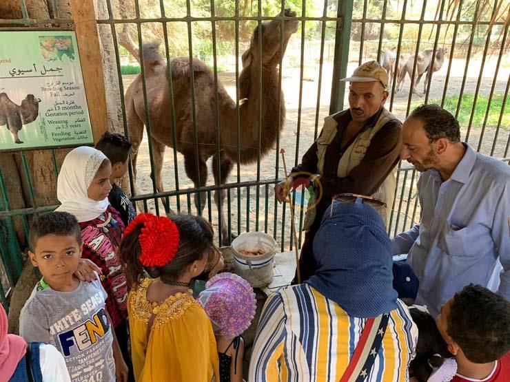 توافد المواطنين على حديقة الحيوان في ثالث أيام العيد