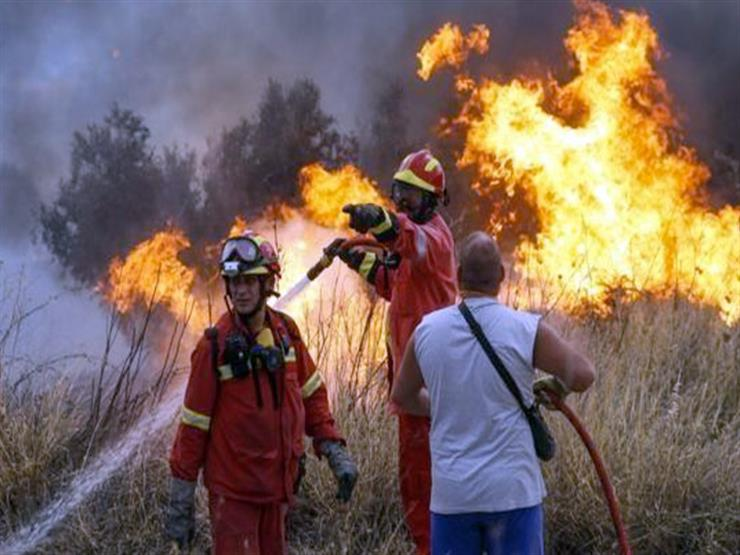 اليونان: فرق الإطفاء تسيطر جزئيا على حرائق غابات بجزيرة وابية