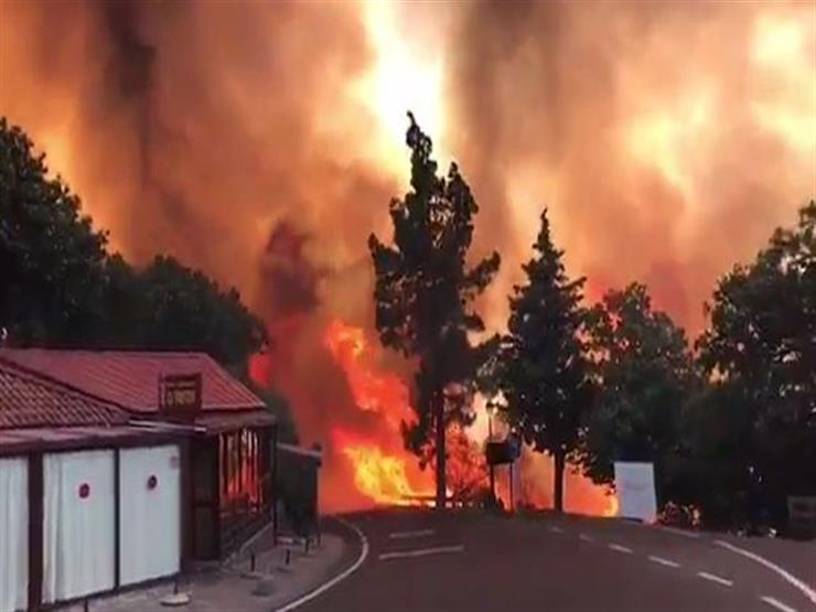 إجلاء ألفي شخص إثر اندلاع حريق غابات بجزيرة جران كناريا الأسبانية
