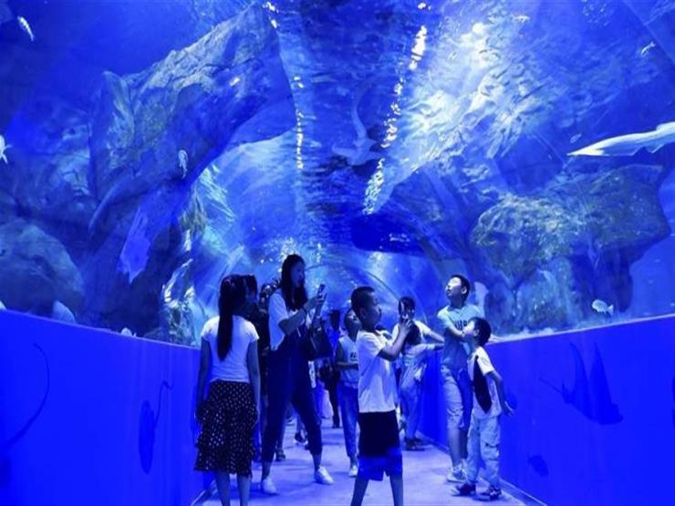 افتتاح أعلى حوض مائي في العالم أعلى هضبة بالصين