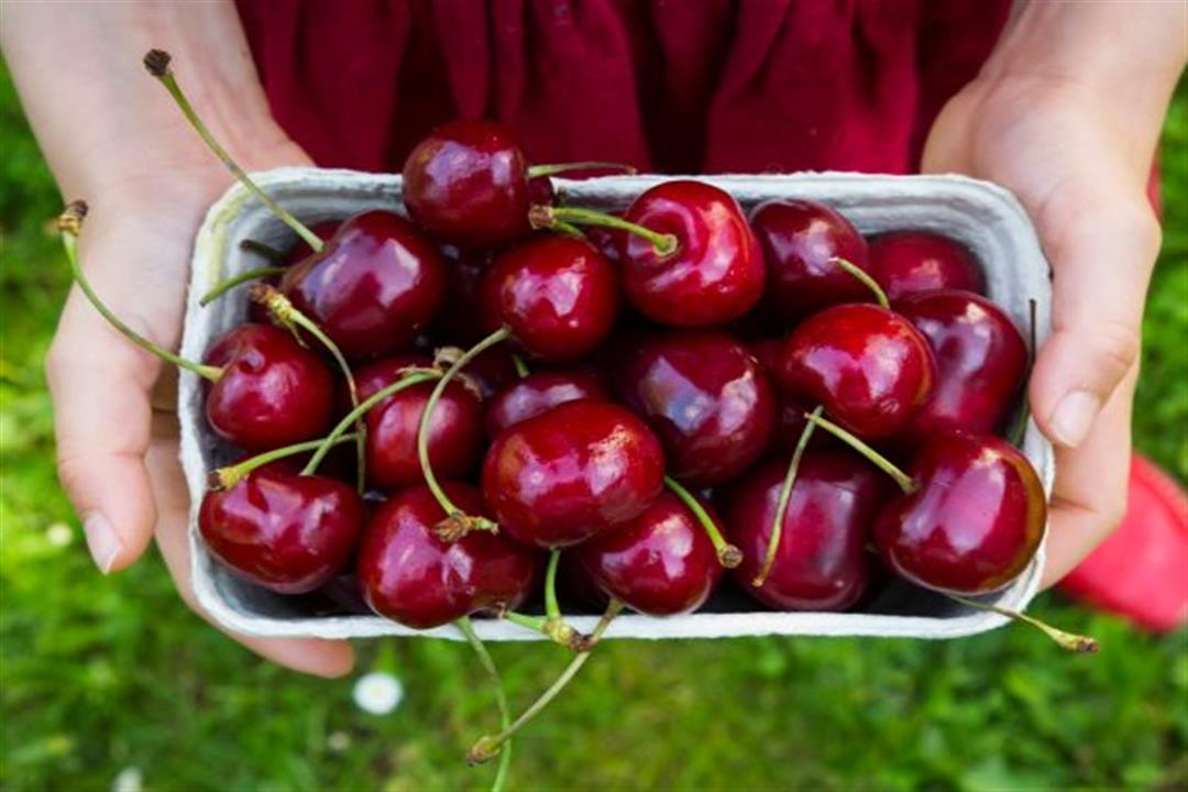 مفيد لمرضى السكري..5 فوائد للكريز